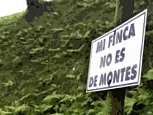 Soria y Pinares ante la nueva Ley de Montes