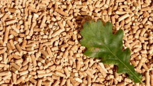 pellets_biomasa_forestal_ediima20140203_0727_13_93515200