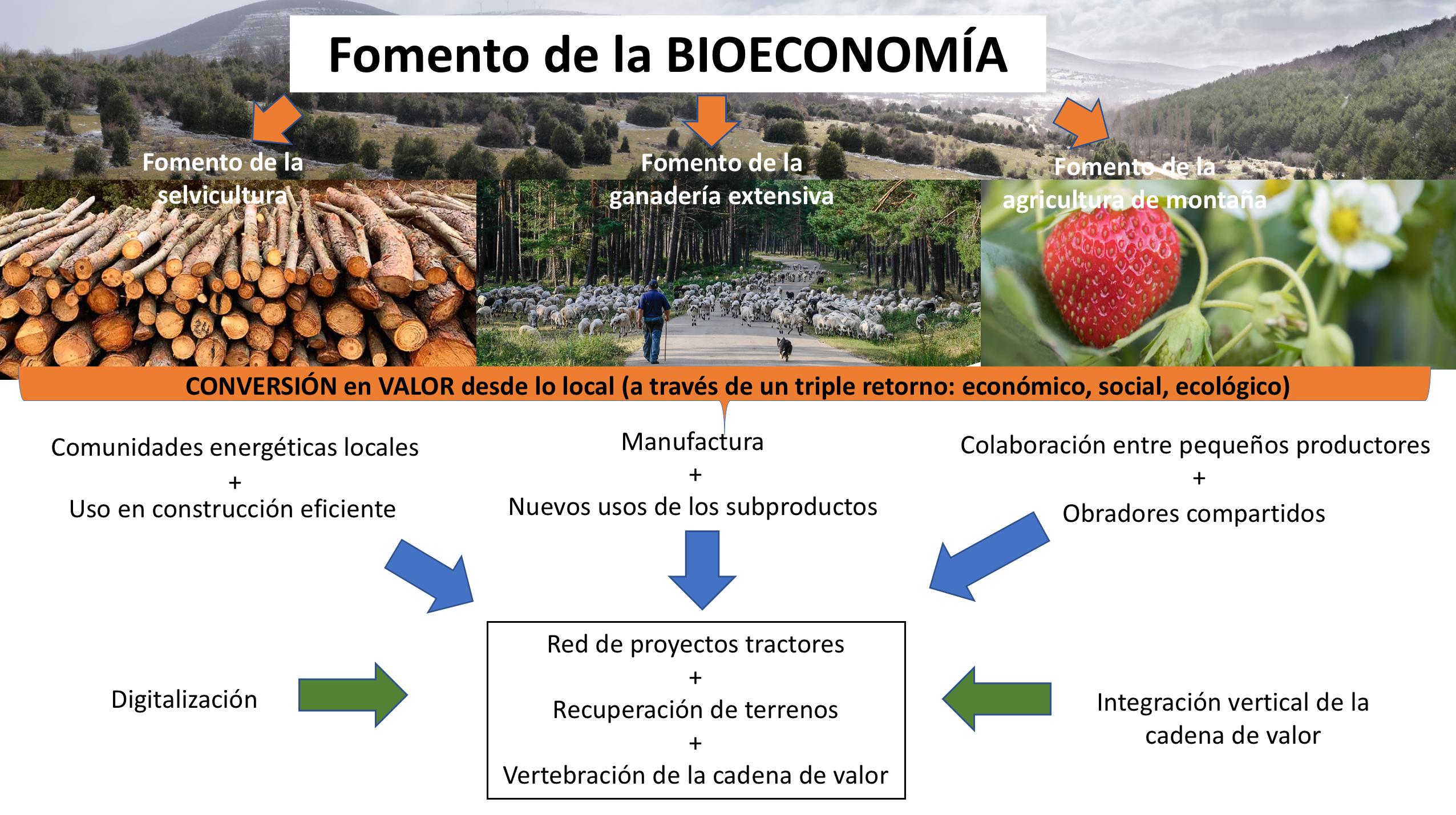 Proyecto para la recuperación de los municipios forestales